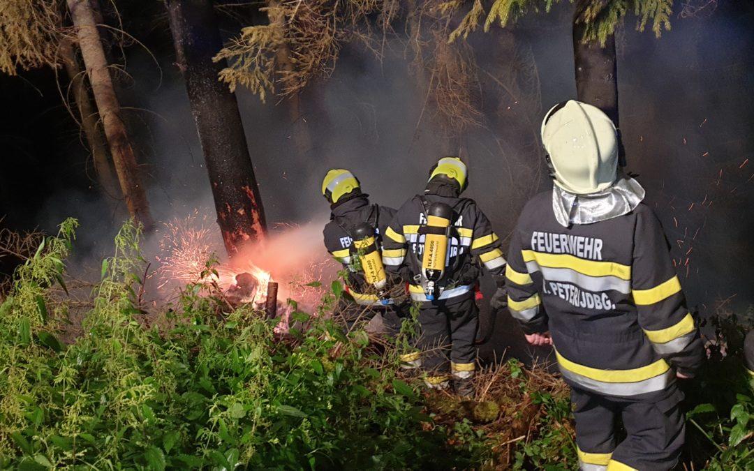 Waldbrand im Möschitzgraben